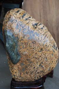 Petrified bamboo stone for garden at charlies antiques in williamsburg va
