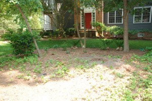 landscaped yard ready for boulderscaping at charlies antiques in williamsburg va